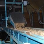 Unloading Seed