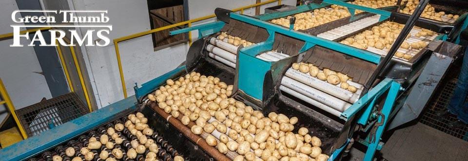 Slide – Potatoes